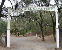 Olive Hill Cemetery 4
