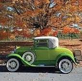 car-fallcolors-SQUARE