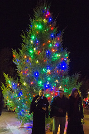 Lit Tree 2016_150crop